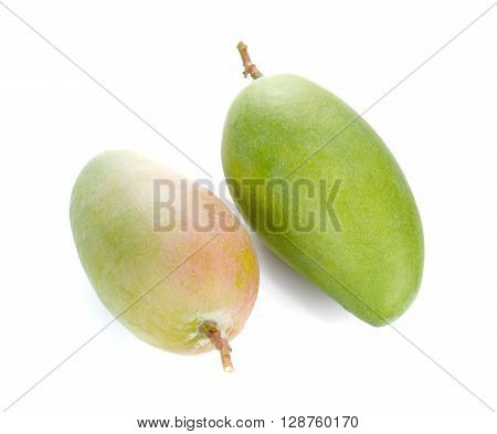 Two Fresh Mango Two Green Mango isolated on white background.