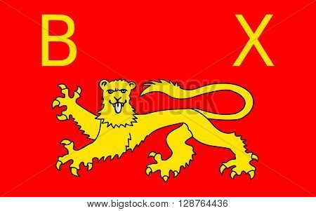 Flag of Bayeux is a commune in the Calvados department in Normandy in northwestern France.