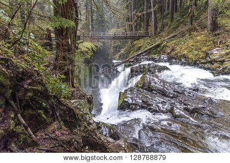 Sol Duc Waterfall in Spring at Olympic National Park