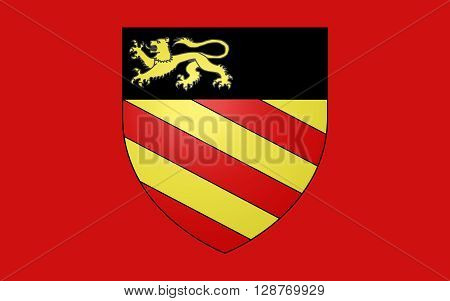 Flag of Palaiseau is a commune in the southern suburbs of Paris France. Palaiseau is a sub-prefecture of the Essonne department and the seat of the Arrondissement of Palaiseau