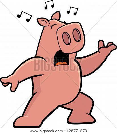 Pig Singing