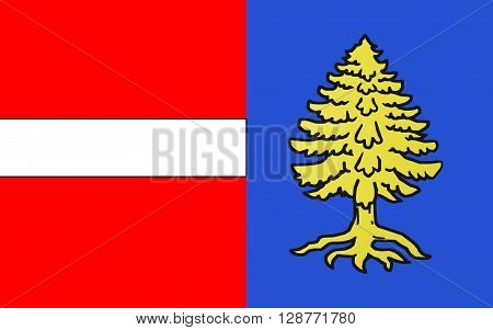 Flag of Thann is a commune in the northeastern French department of Haut-Rhin in Alsace-Champagne-Ardenne-Lorraine. It is the sous-prefecture of the arrondissement of Thann-Guebwiller and part of the canton of Cernay