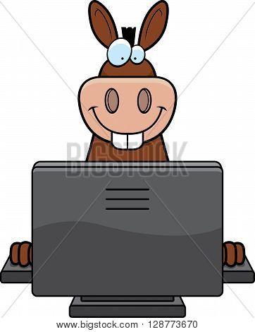 Donkey Computer
