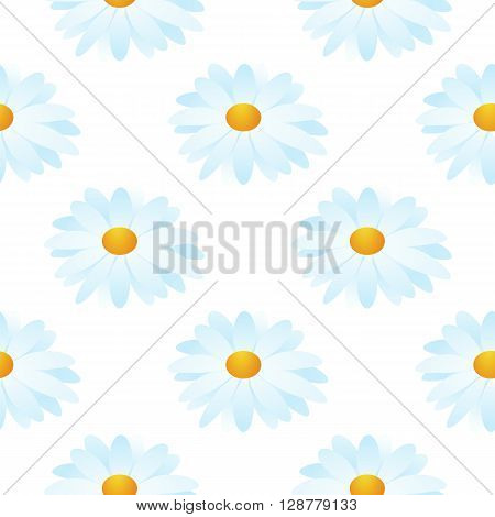 seamless pattern of camomile on white background. Vector illustrator