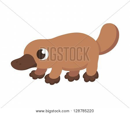 Cartoon platypus illustration. Cute little platypus isolated on white.