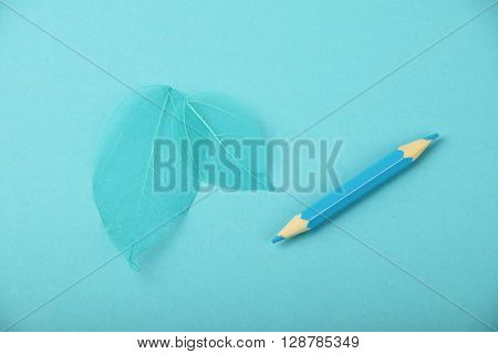 Small Blue Pencil And Skeleton Leaves