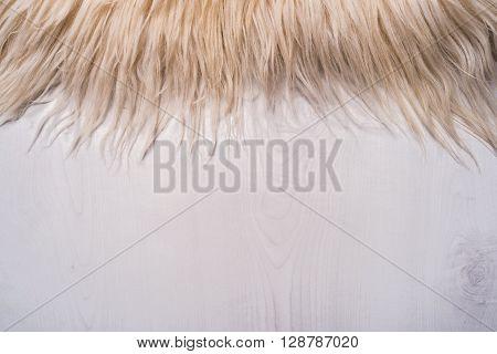 Decorative fur carpet on wood floor background