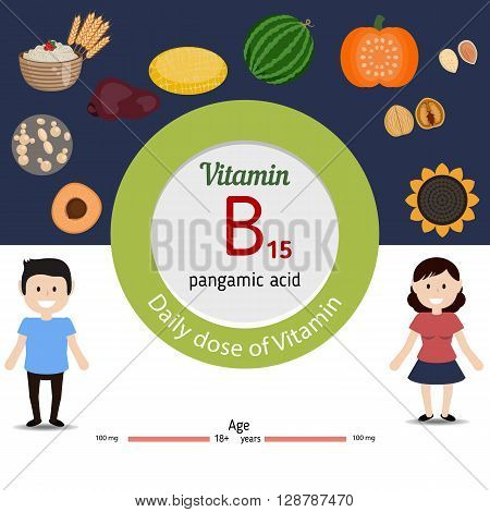 Vitamin B15 and vector set of vitamin B15 rich foods. Healthy lifestyle and diet concept. Pangamic acid. Daily dose of vitamin B15.