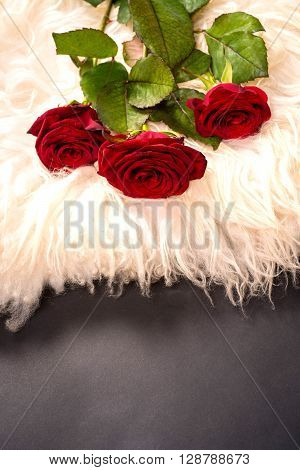 a bouquet of roses on sheep's clothing