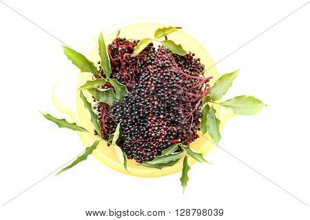A photo of some juicy elder Berries