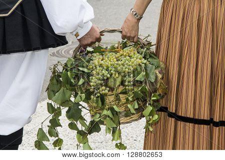 QUARTU S.E. ITALY - 15 September 2013: Grape Festival in honor of the celebration of St. Helena - Sardinia - Sardinian costumes Boys are holding a basket with grapes