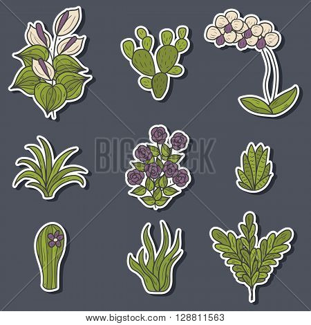 Set of cute cartoon hand drawn houseplants stickers