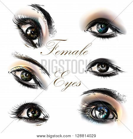 A collection or set of beautiful realistic female eyes for design