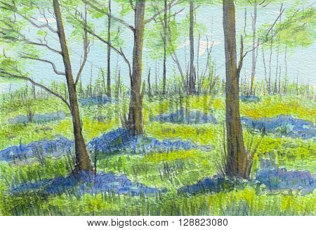 Watercolor showing beautiful bluebell woods in May.