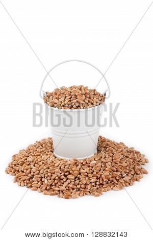 White bucket full of wheat stands on a heap wheat on a white background