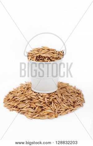 White bucket full of oats stands on a heap oats on a white background