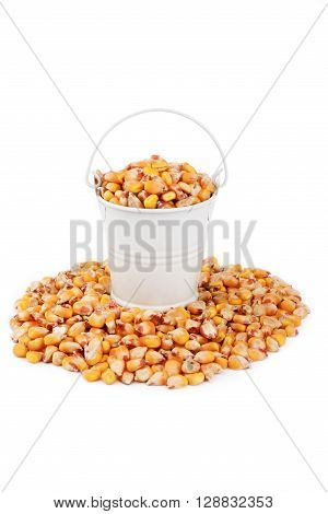 White bucket full of corn stands on a heap corn on a white background