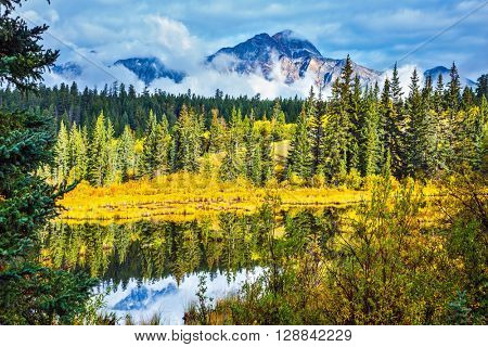 Charming Patricia lake among evergreen forests, yellow bushes and far mountains. Warm autumn day in park Jasper, the Rocky Mountains of Canada