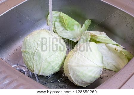 Cabbage in the kitchen sink under the water
