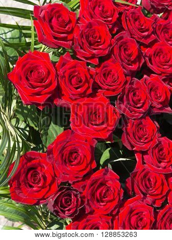bright red rose with green leaves in a large bouquet top view