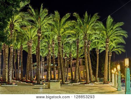 The slender palm trees in Daniel Garden surrounded by colorful flower beds neighboring with the Safra Square and the City Hall Jerusalem Israel.