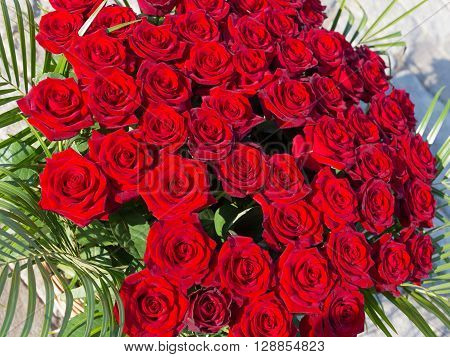 bright dark red roses with green leaves in a big beautiful bouquet top view