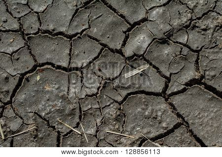Long waterless dirt completely dried out texture background