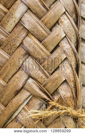 Pattern Of Interweaving Brown Palm Leaves