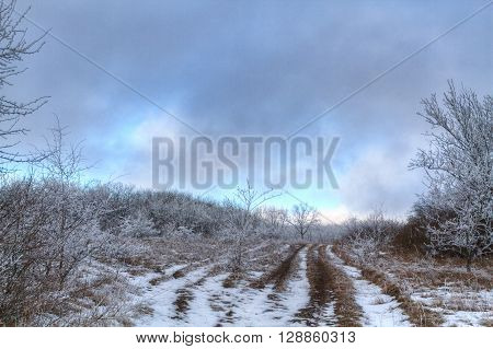 road through frozen forest with snow Winter park in snow