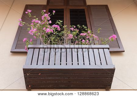 Wooden Window Decorating With Flowerpot