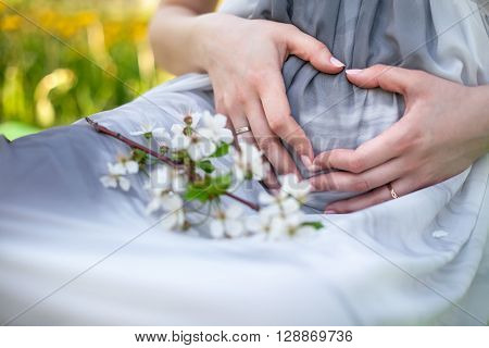 Hands of the pregnant woman in the form of a heart on a stomach. Hands of the pregnant woman and spring flower. Gray dress. Mother's hands. Spring.
