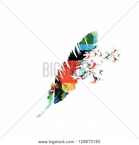 Vector illustration of colorful feather with hummingbirds