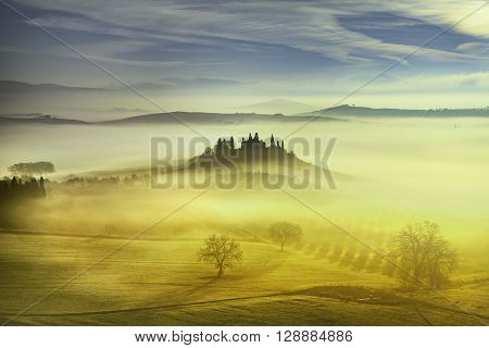 Tuscany foggy morning farmland and cypress trees country landscape. Italy Europe.