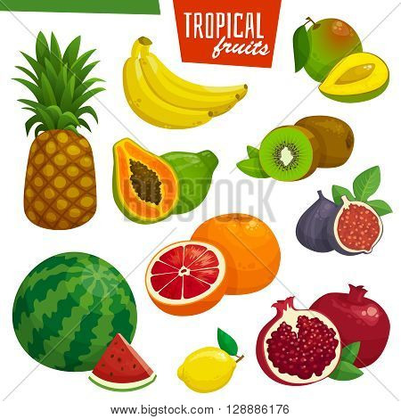 Tropical fruits collection. Cartoon vector illustration. Banana pineapple kiwi pomegranate and grapefruit.