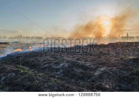 Fire in the desert. Smoke from burning dry grass overshadows the sun