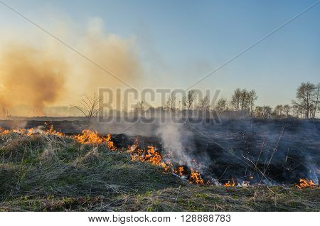 Fire in the desert. Heavy smoke and the burning of a dry grass