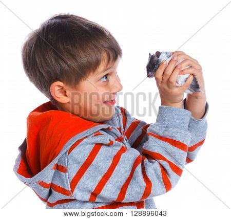 Cute boy plays with hamster. Isolated on white background. Studio shot
