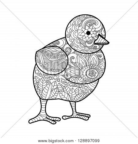Chick coloring book for adults vector illustration.