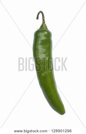Serrano hot pepper (Capsicum annuum Serrano). Image of single pepper on white background