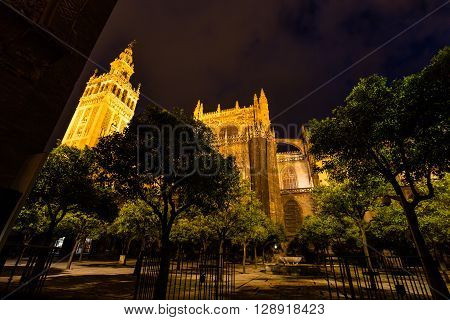 The illuminated Cathedral of Seville and Giralda  view from the courtyard side by night, the world's largest Gothic Cathedral and the third religious building to size, Andalucia, Spain.