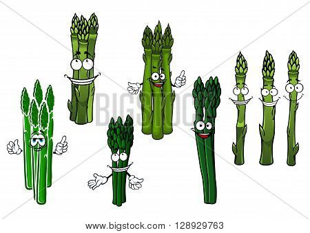 Organically grown wholesome cartoon bundles of asparagus vegetables characters with juicy green spears and happy smiling faces. Use as vegetarian recipe, agricultural harvest or kitchen interior design