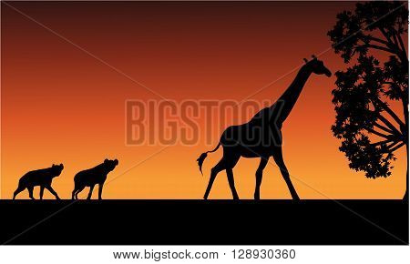 Silhouette of panther and giraffe with orange backgrounds