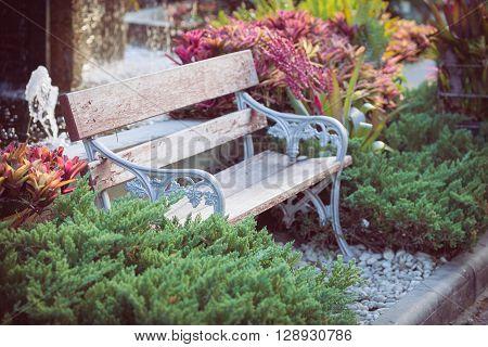 old vintage bench in flowers garden, beautiful garden