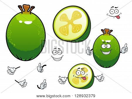 Cartoon fresh green whole and halved feijoa fruit characters with sweet juicy flesh and gelatinous seed pulp in the center. Happy smiling pineapple guava characters for healthy dessert recipe, juice packaging or agriculture design