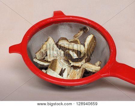 Porcini Mushroom In Colander