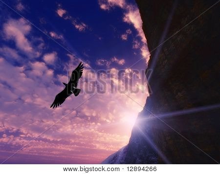 Great eagle flying on a blue sky