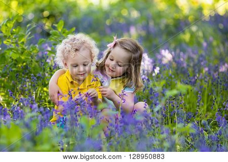 Kids gardening. Children play outdoors in bluebells meadow. Little girl and boy brother and sister work in the garden planting bluebell flowers watering blue bell flower bed. Family fun in summer.