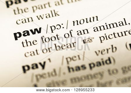 Close Up Of Old English Dictionary Page With Word Paw.