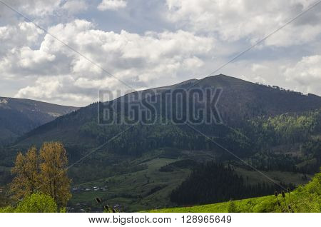 Summer vacation in the mountains. Natural mountain landscapes