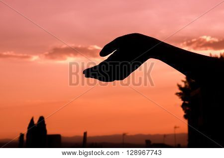 Hand over pink sunset with low shadows ** Note: Soft Focus at 100%, best at smaller sizes